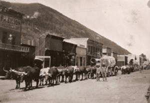 Burro Mining Town